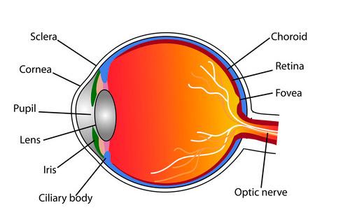 clinica oftalmologica Madrid -7