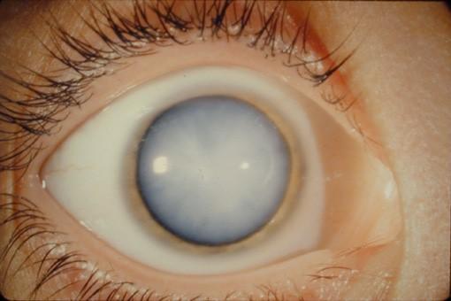 clinica de oftalmologia -2